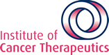 Institute of Cancer Therapeutics (ICT)